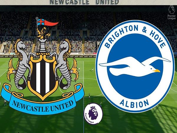 Nhận định Newcastle vs Brighton, 23h30 ngày 21/09 : Chủ nhà gặp khó