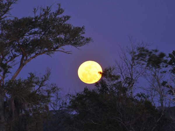 Mơ thấy trăng có phải cát mộng, đánh con số nào phát tài?