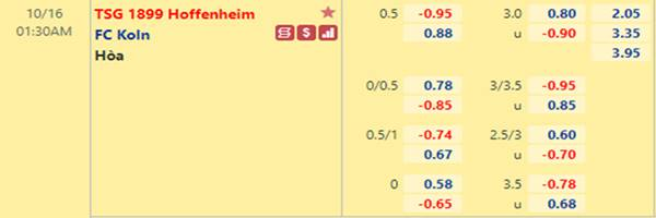Tỷ lệ kèo giữa Hoffenheim vs Cologne